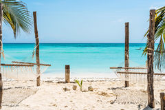 Palm and hammock on Zanzibar beach with blue sky and ocean on the background. Beautiful view of palm and hammocks on Zanzibar beach with blue sky and ocean on Royalty Free Stock Photography