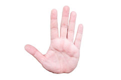 Palm hand gesture Stock Photography