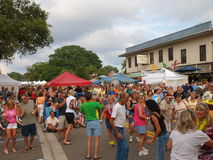 Palm Harbor, van het de papegaai hoofdblok van Florida partij 8 Royalty-vrije Stock Fotografie