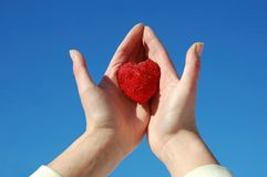 Palm and heart Royalty Free Stock Image
