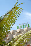 Palm and hotel Stock Image