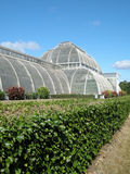 Palm House Royalty Free Stock Photography
