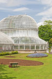 The Palm House royalty free stock images