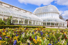 Palm House in Belfast Stock Image