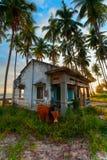 Palm house evening Stock Image