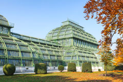 Palm house in garden of Schonbrunn Palac Stock Photography