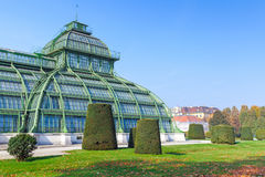The Palm house, garden of Schonbrunn Palace Royalty Free Stock Photography