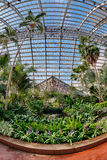 Palm House Royalty Free Stock Images