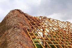 Palm house I Royalty Free Stock Image