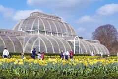 Palm House, an iconic Victorian glasshouse that recreates a rainforest climate located at Kew Garden, England. London, UK - April 2018: Palm House, an iconic Stock Photo