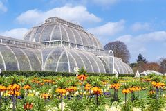 Palm House, an iconic Victorian glasshouse that recreates a rainforest climate located at Kew Garden, England. London, UK - April 2018: Palm House, an iconic Royalty Free Stock Photography