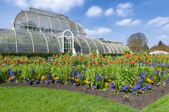 Palm House, an iconic Victorian glasshouse that recreates a rainforest climate located at Kew Garden, England. London, UK - April 2018: Palm House, an iconic Royalty Free Stock Image