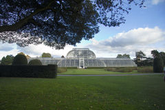 Palm House at Kew Stock Photos