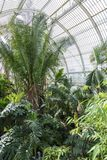 Palm House Kew Gardens Royalty Free Stock Image