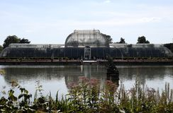 Palm House Kew Gardens royalty free stock image