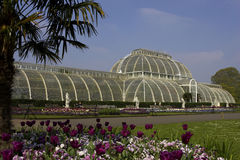 Palm house kew gardens London uk. Landscape royalty free stock photo