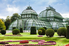Palm House Schloss Schonbrunn garden, Vienna Stock Image