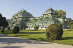 Palm house Vienna. The palm house belongs to the arrangement of castle Schönbrunn Stock Images