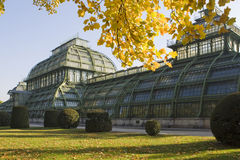 Palm house Vienna. The palm house belongs to the arrangement of castle Schönbrunn Royalty Free Stock Images