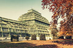 Palm house in Vienna, Austria. Vintage stylized Royalty Free Stock Image