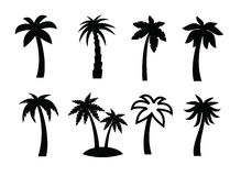 Palm icon Stock Images