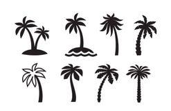 Palm icon Stock Photo
