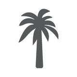 Palm icon. Vector concept illustration for design. Dark gray vector flat single palm tree silhouette icon isolated on white background Stock Photo