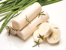 Palm ingredient Stock Images