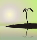 Palm on the island 3. Illustration of a palm tree on the island, reflected in water. The image in the form of a black silhouette on a blue background. It can be vector illustration
