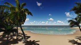 Palm island Stock Image