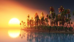 Palm island at ocean and sunset Stock Images