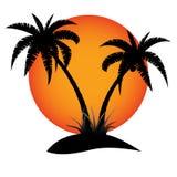Palm island and sun Stock Photos