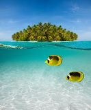 Palm island and underwater world Stock Photos