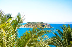 Palm landscape island. Island among the palm trees in the sea Royalty Free Stock Photography