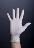 Palm in latex glove Stock Photography