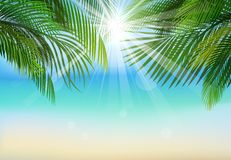Palm leaf background on blue sky and sunbeams.Summer holidays. Illustration of Palm leaf background on blue sky and sunbeams.Summer holidays Stock Image