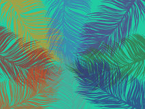 Palm leaf background colorful Stock Images