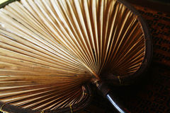 Palm-leaf fan. Traditional fan made of palm leaves Stock Images