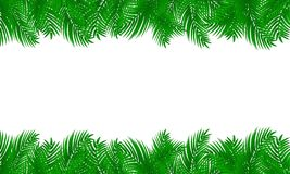Palm leaf frame on white isolated background. stock photography