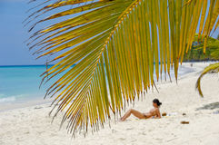 Palm leaf hanging over exotic beach. At Saona Island. A woman is sunbathing in the background Royalty Free Stock Photos
