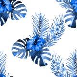 Palm leaf paradise background royalty free illustration