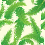 Palm Leaf Pattern Stock Photography