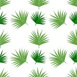 Palm leaf pattern seamless vector background tile, branch of the coconut tree. Vector illustration. royalty free illustration