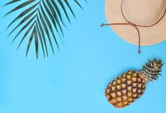 Palm leaf, pineapple and hat on blue background. Summertime background. Vacation concept stock image