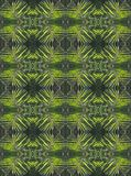PALM LEAF REPEAT PATTERN. Image of a black and green palm leaf repeat pattern Royalty Free Stock Photos