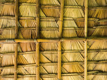 Palm leaf roof Stock Image