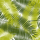 Palm Leaf Seamless Pattern Background Vector Stock Photo