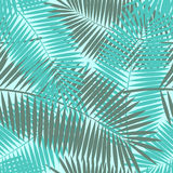 Palm Leaf Seamless Pattern Background Vector Stock Image