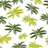 Palm Leaf Seamless Pattern Background Vector Stock Photography