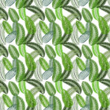 Palm Leaf. Seamless Pattern. Vector Illustration. Stock Photography